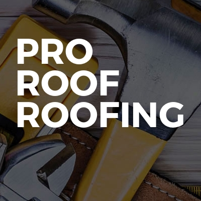 PRO ROOF Roofing