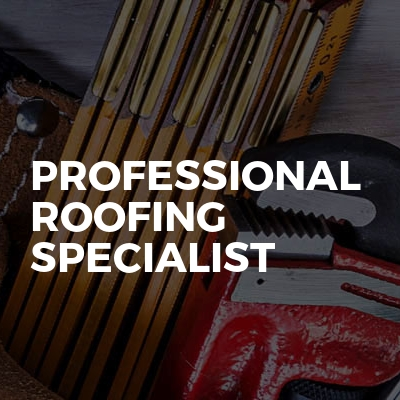 Professional Roofing Specialist