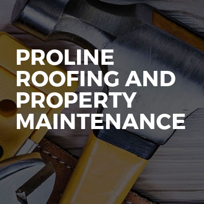 Proline roofing and property maintenance
