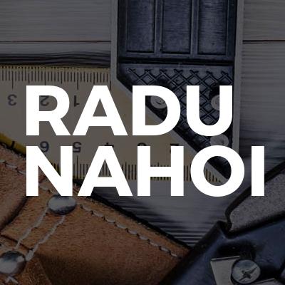 Radu Nahoi