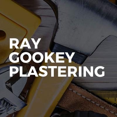 Ray Gookey Plastering