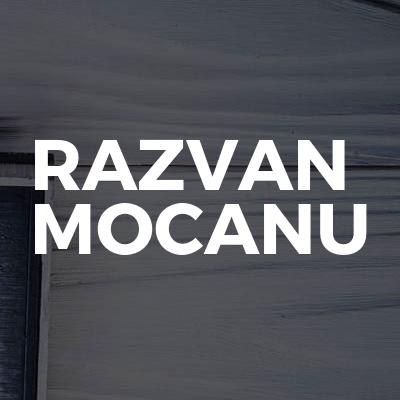Razvan Mocanu