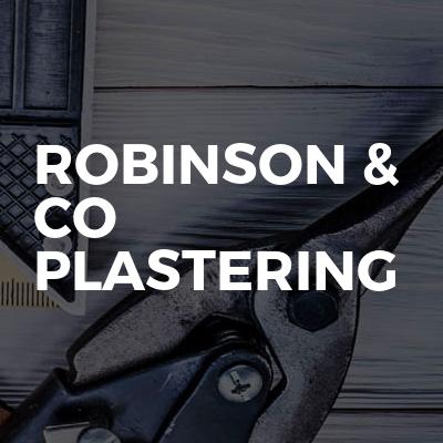Robinson & Co Plastering