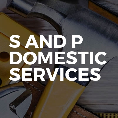 S And P Domestic Services