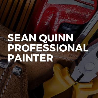 Sean Quinn professional painter