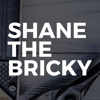 Shane The Bricky