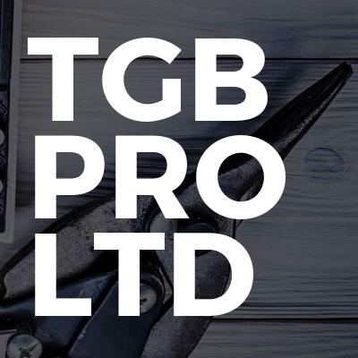TGB PRO LTD