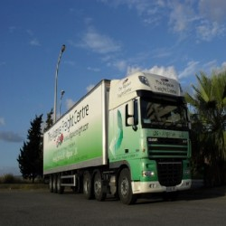 The Algarve Freight Centre