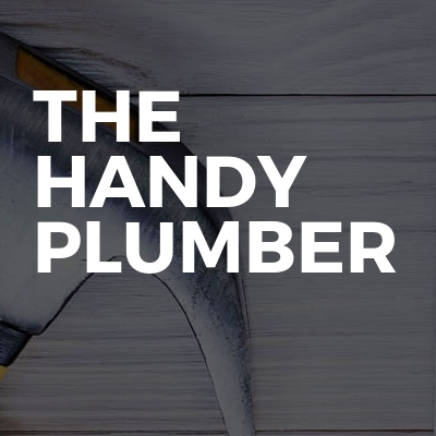 The handy plumber