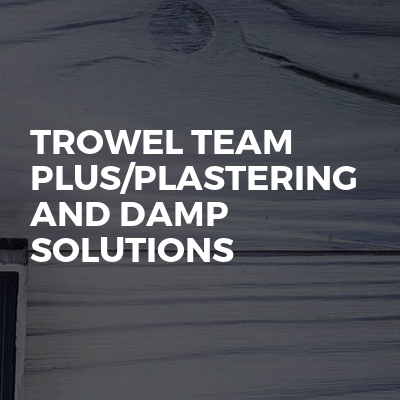 Trowel team plus/plastering and damp solutions
