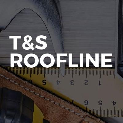 t&s roofline