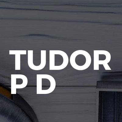 Tudor P D