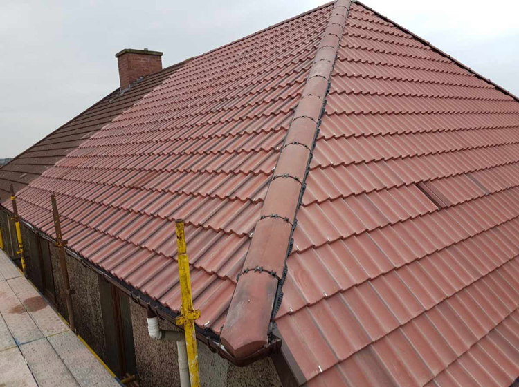 Sienna Roofing and Building Contractors