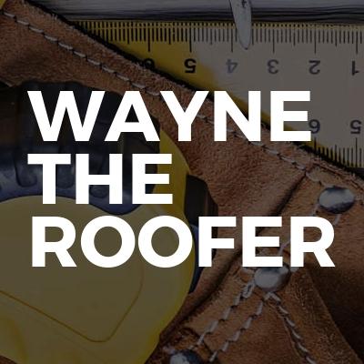 Wayne The Roofer