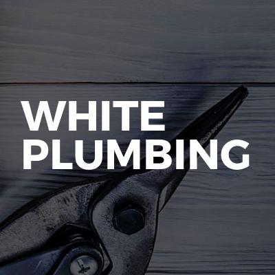 White Plumbing